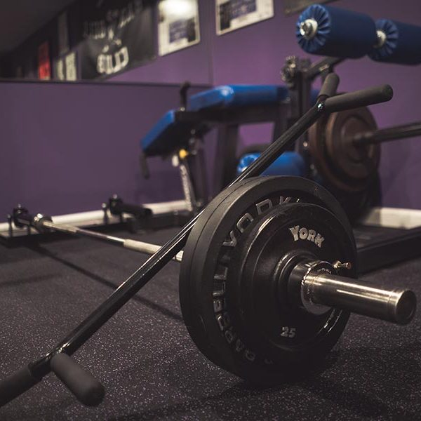 Ground-Based Grappler - Legend Fitness Legend Fitness