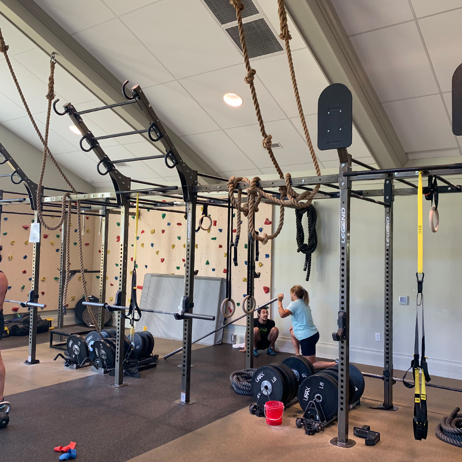 A Continuum Rig System setup in a gym environment.